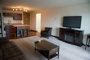 Furnished One Bedroom Living Room/Kitchen with Granite Countertops