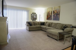 Furnished One Bedroom Living Room with Balcony