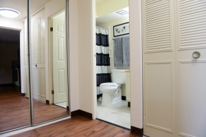 Spacious Closets and Hallway