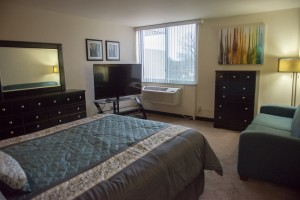 Furnished Executive Studio