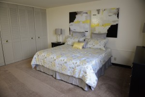 Furnished One Bedroom - Large Closets