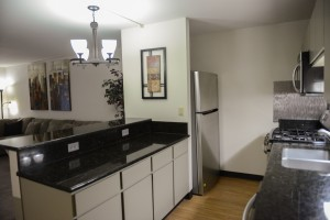One Bedroom Kitchen with Granite Countertops and Stainless Steel Appliances